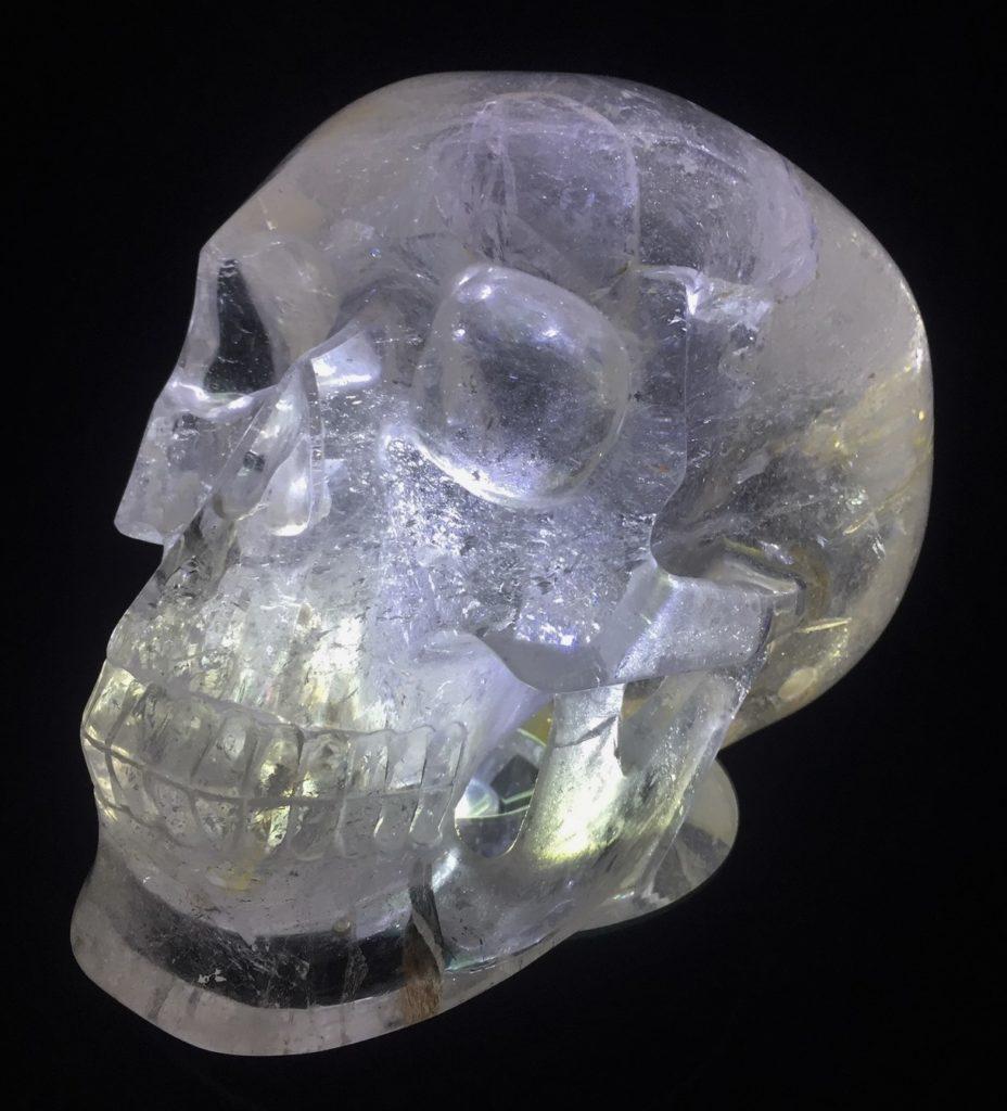 Enter the Earth: Skull